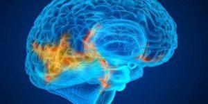 «Чем агрессивней опухоль, тем она более уязвима»