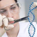 Американские ученые отредактировали геном эмбриона человека