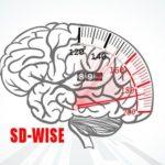 Нейробиологи создали тест на мудрость