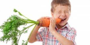 Грызть морковку вместе с гранитом науки