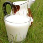 Диетологи объяснили опасность нежирных молочных продуктов
