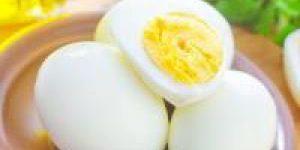 Обнаружено удивительное свойство куриных яиц