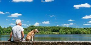 Собаки продлевают жизнь своих хозяев