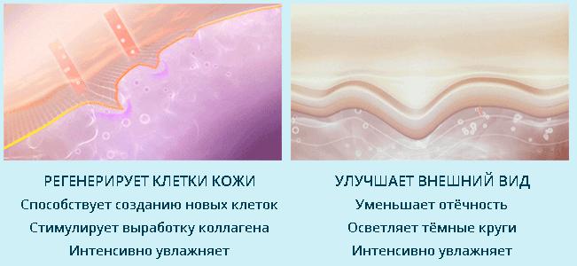 medutox-deistvie