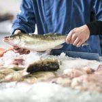 Что нужно знать о гельминтах, которыми мы рискуем заразиться при употреблении рыбы