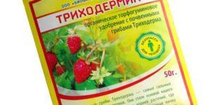 Триходермин — активатор всхода семян и быстрого роста