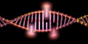 Новость о перспективах создания неуязвимых человеческих клеток не стоит воспринимать буквально