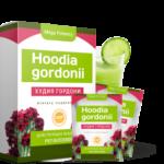 Hoodia Gordonii для похудения