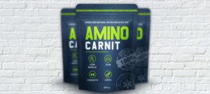AminoCarnit для роста мышц, жиросжигания, получения рельефа купить