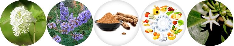 Estrofemin только натуральные ингредиенты