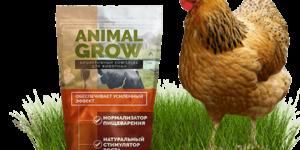 ОТЗЫВЫ об Animal Grow