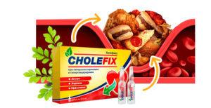 холефикс купить для снижения уровня холестерина