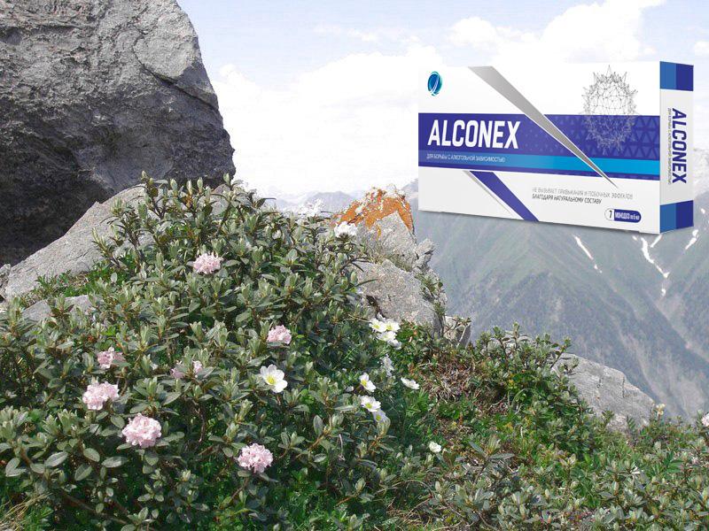 Alconex от алкоголизма состав