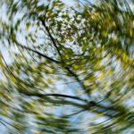 Головокружение при вставании: причины и способы решения
