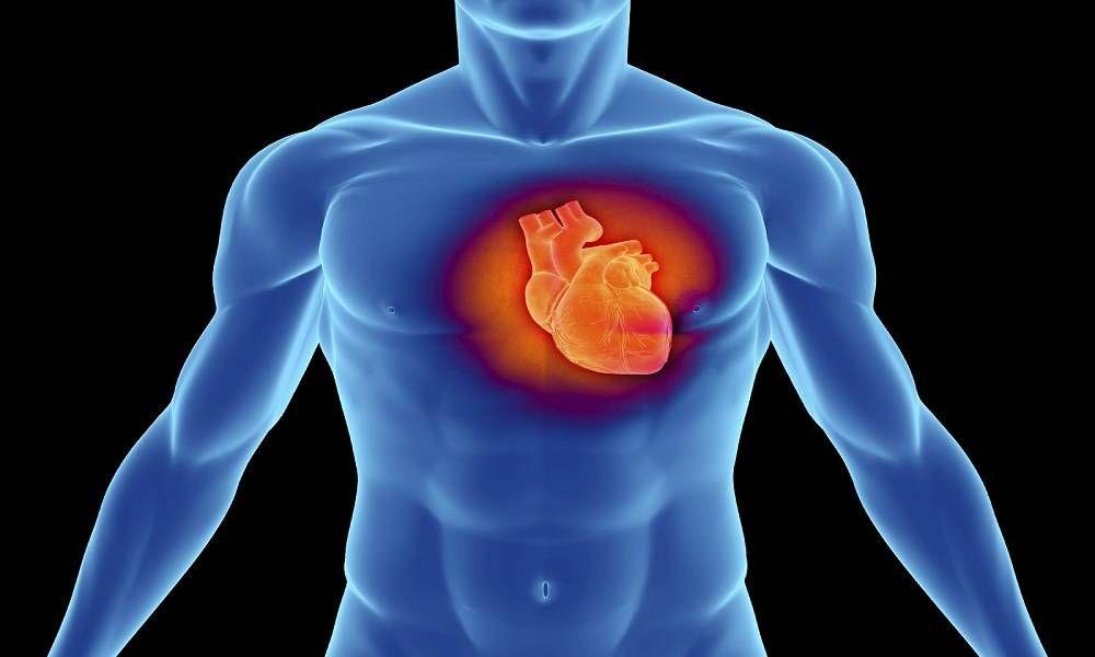 Влияние на артериальное давление