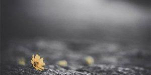 Хроническая боль может толкать людей на самоубийство