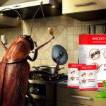 Инсект Форс от насекомых — избавьтесь от вредителей навсегда!