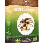 Mushrooms Farm – грибная полянка у вас дома