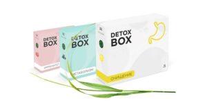 Detox Box для похудения: гарантирует желаемый результат всего за курс!