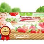 Гигантелика УРОЖАЙ КРУПНОЙ И ВКУСНОЙ КЛУБНИКИ: выращивайте ягоды где угодно и когда угодно!