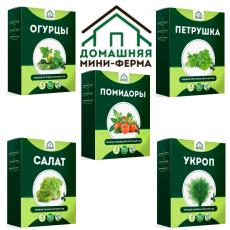 Полезное изобретение мини-ферма Домашние огурцы, помидоры, зелень
