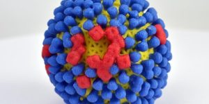Вирусы гриппа могут становиться устойчивыми к лечению новым препаратом за несколько дней