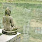 Медитация замедлила старение мозга тибетского монаха на 8 лет