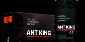 Комплекс Ant King