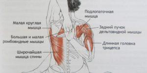 Болит подвздошная мышца – что делать