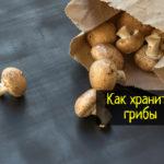 Как сохранить свежие грибы
